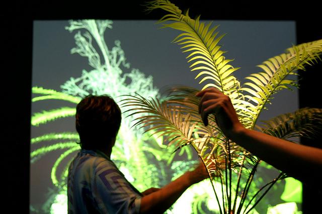 Ars Electronica Festival 2004: Interactive Plant Growing / Christa Sommerer, Laurent Mignonneau